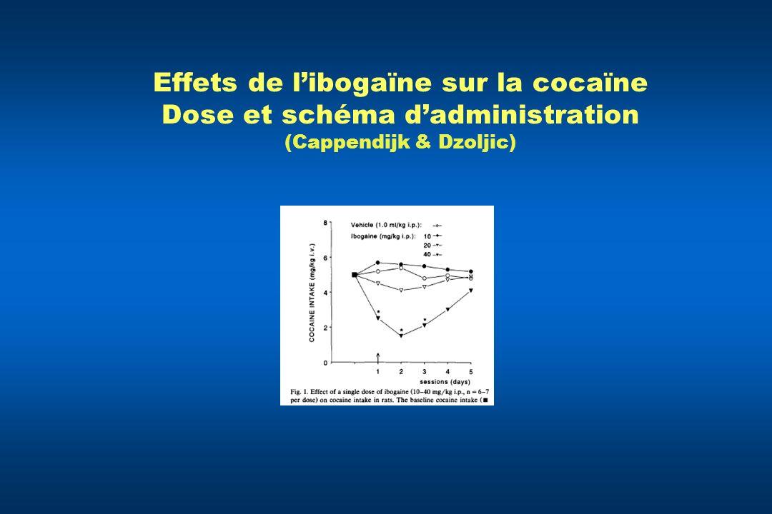 Effets de libogaïne sur la cocaïne Dose et schéma dadministration (Cappendijk & Dzoljic)
