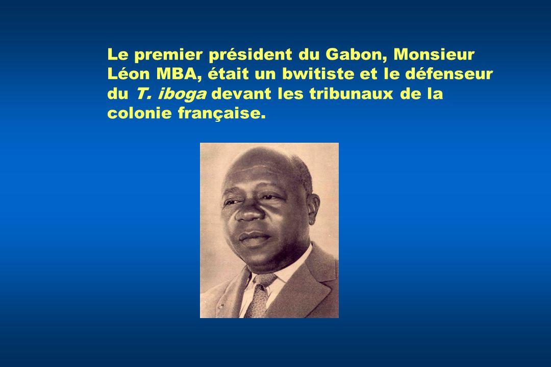 Le premier président du Gabon, Monsieur Léon MBA, était un bwitiste et le défenseur du T. iboga devant les tribunaux de la colonie française.