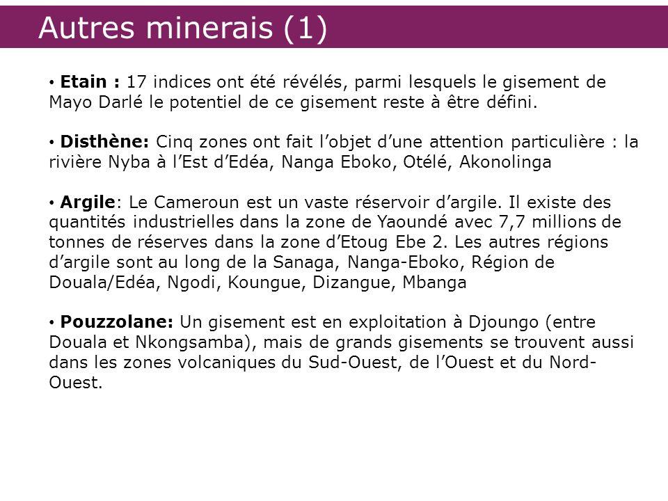 Autres minerais (1) Etain : 17 indices ont été révélés, parmi lesquels le gisement de Mayo Darlé le potentiel de ce gisement reste à être défini. Dist