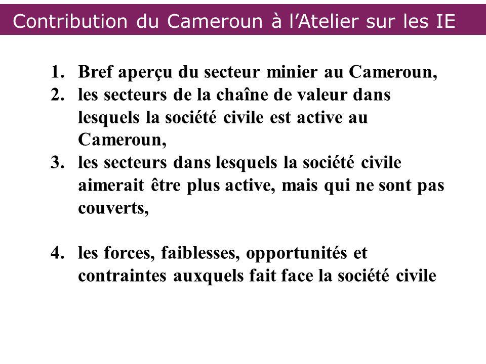 1.Bref aperçu du secteur minier au Cameroun, 2.les secteurs de la chaîne de valeur dans lesquels la société civile est active au Cameroun, 3.les secte