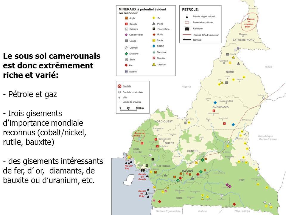 Le sous sol camerounais est donc extrêmement riche et varié: - Pétrole et gaz - trois gisements dimportance mondiale reconnus (cobalt/nickel, rutile,