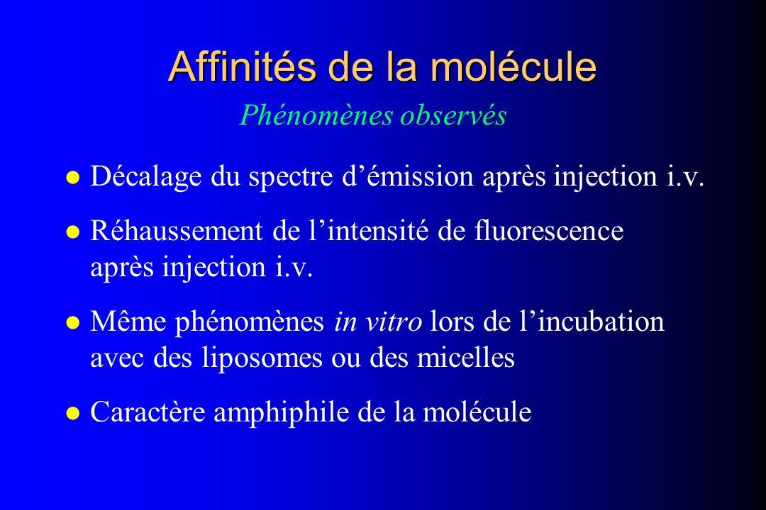 Affinités de la molécule l Décalage du spectre démission après injection i.v. l Réhaussement de lintensité de fluorescence après injection i.v. l Même