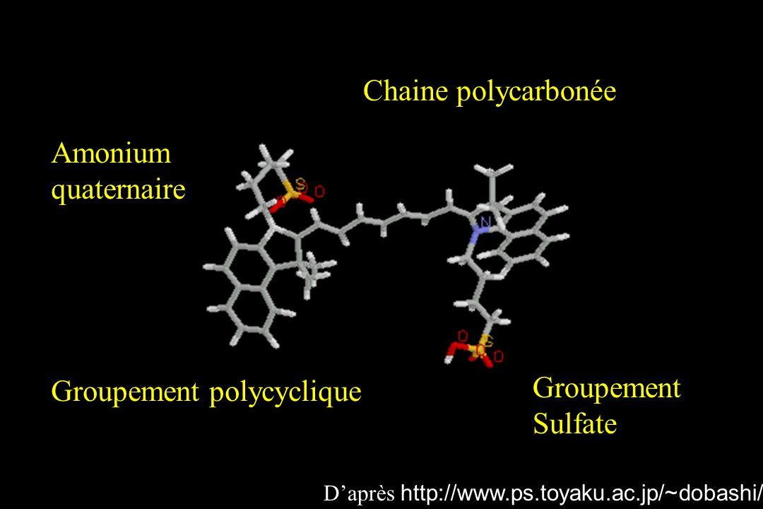 Chaine polycarbonée Groupement polycyclique Groupement Sulfate Amonium quaternaire Daprès http://www.ps.toyaku.ac.jp/~dobashi/