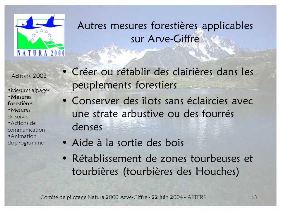 Comité de pilotage Natura 2000 Arve-Giffre - 22 juin 2004 - ASTERS13 Autres mesures forestières applicables sur Arve-Giffre Créer ou rétablir des clai