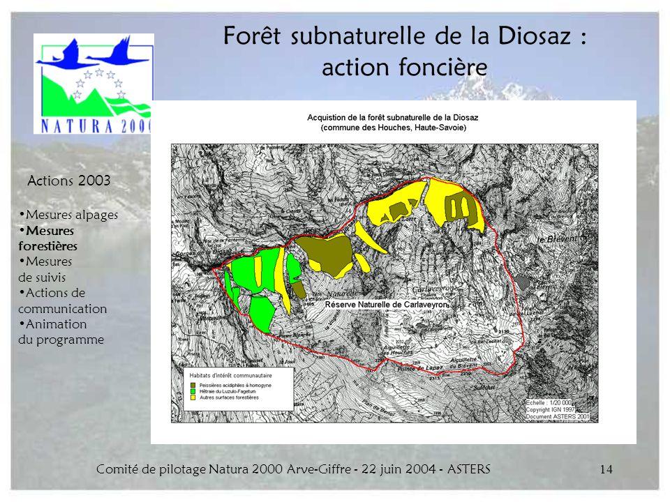 Comité de pilotage Natura 2000 Arve-Giffre - 22 juin 2004 - ASTERS14 Forêt subnaturelle de la Diosaz : action foncière Actions 2003 Mesures alpages Me