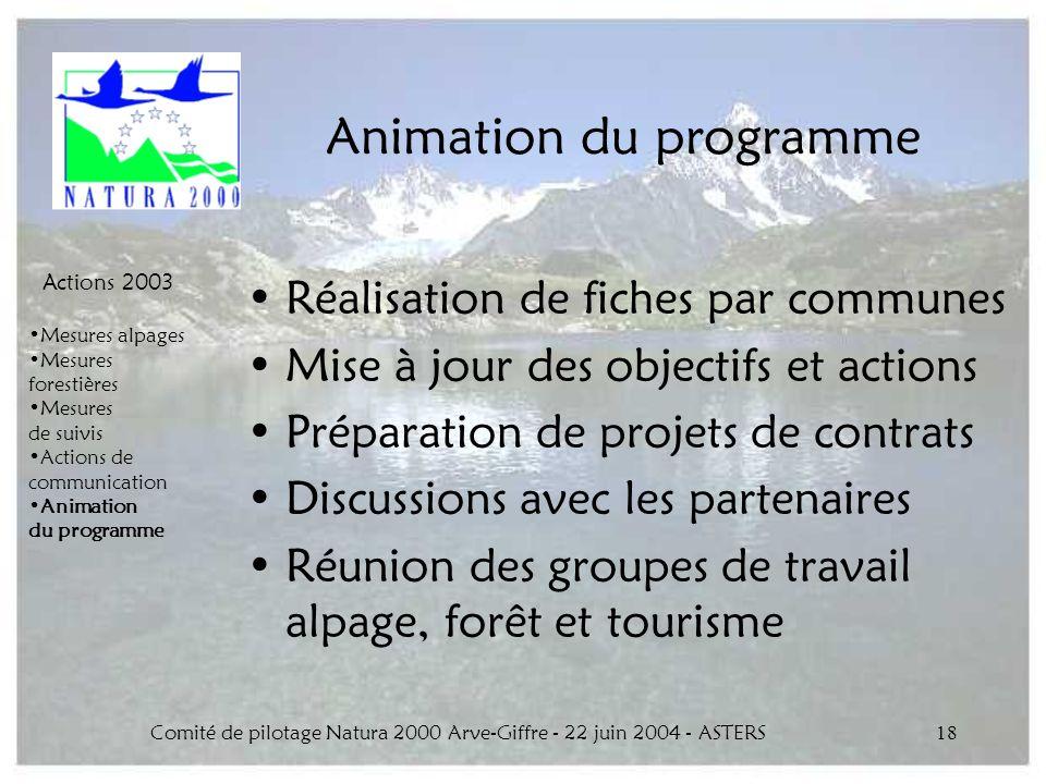 Comité de pilotage Natura 2000 Arve-Giffre - 22 juin 2004 - ASTERS18 Animation du programme Réalisation de fiches par communes Mise à jour des objecti