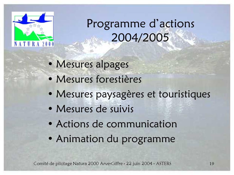 Comité de pilotage Natura 2000 Arve-Giffre - 22 juin 2004 - ASTERS19 Programme dactions 2004/2005 Mesures alpages Mesures forestières Mesures paysagèr