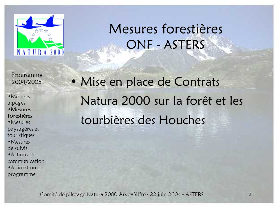 Comité de pilotage Natura 2000 Arve-Giffre - 22 juin 2004 - ASTERS21 Mesures forestières ONF - ASTERS Mise en place de Contrats Natura 2000 sur la for