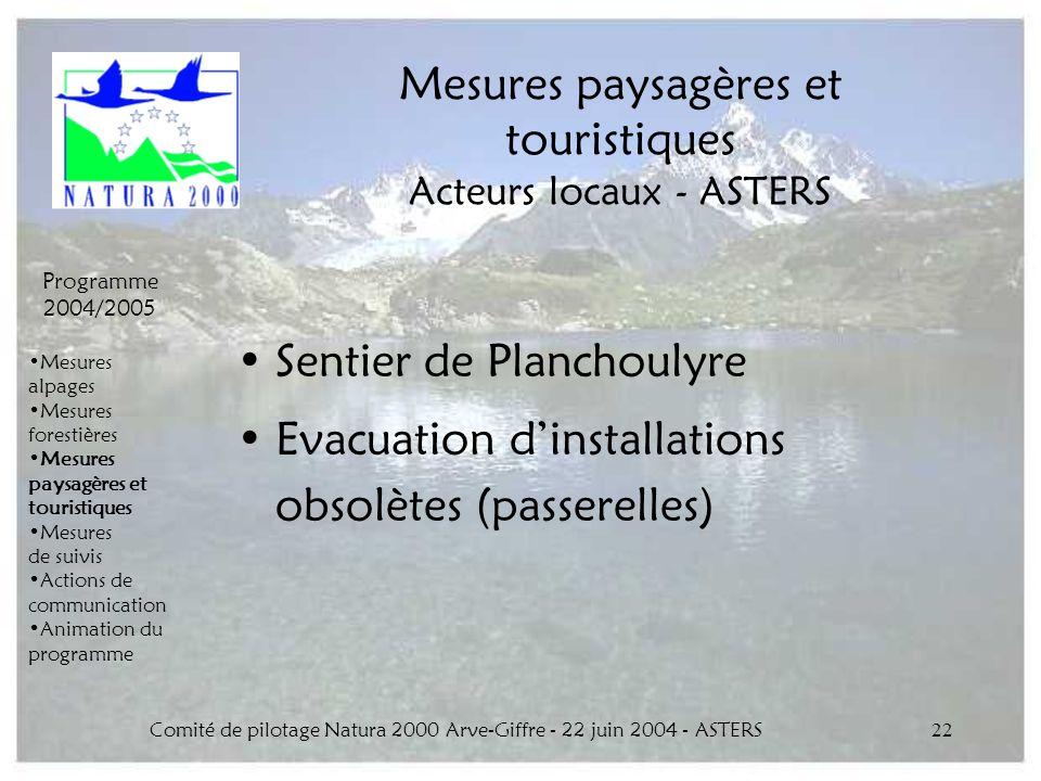 Comité de pilotage Natura 2000 Arve-Giffre - 22 juin 2004 - ASTERS22 Mesures paysagères et touristiques Acteurs locaux - ASTERS Sentier de Planchoulyr