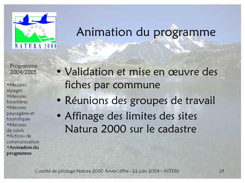 Comité de pilotage Natura 2000 Arve-Giffre - 22 juin 2004 - ASTERS25 Animation du programme Validation et mise en œuvre des fiches par commune Réunion