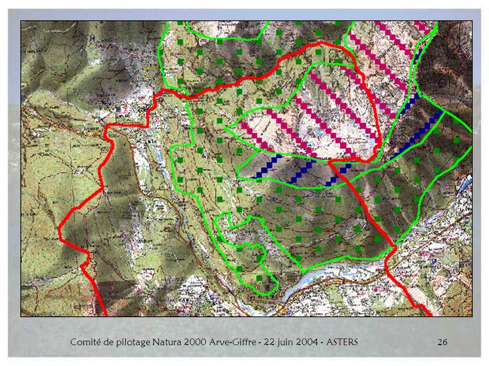 Comité de pilotage Natura 2000 Arve-Giffre - 22 juin 2004 - ASTERS26