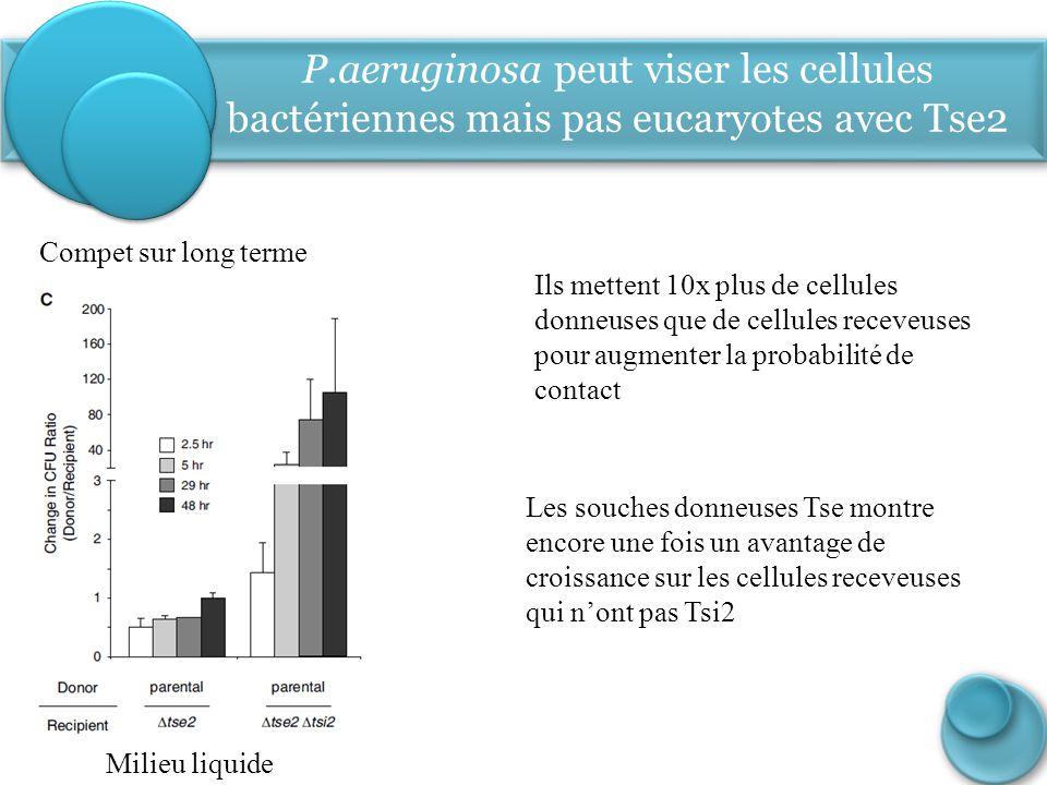 P.aeruginosa peut viser les cellules bactériennes mais pas eucaryotes avec Tse2 Compet sur long terme Ils mettent 10x plus de cellules donneuses que d