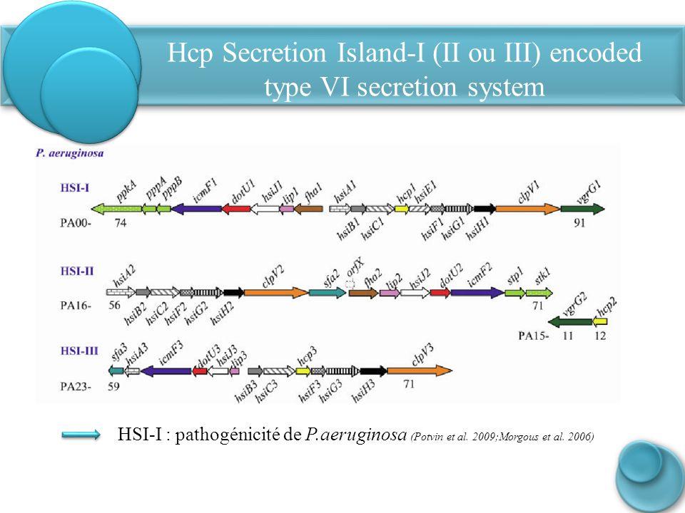 Hcp Secretion Island-I (II ou III) encoded type VI secretion system HSI-I : pathogénicité de P.aeruginosa (Potvin et al. 2009;Morgous et al. 2006)