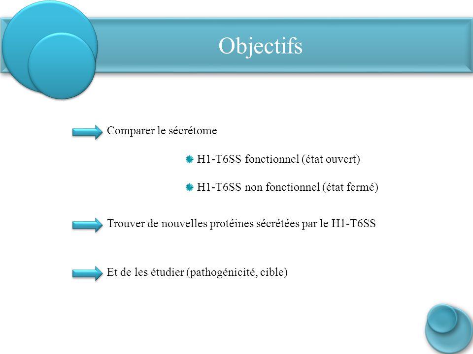 Objectifs Trouver de nouvelles protéines sécrétées par le H1-T6SS Comparer le sécrétome H1-T6SS fonctionnel (état ouvert) H1-T6SS non fonctionnel (éta