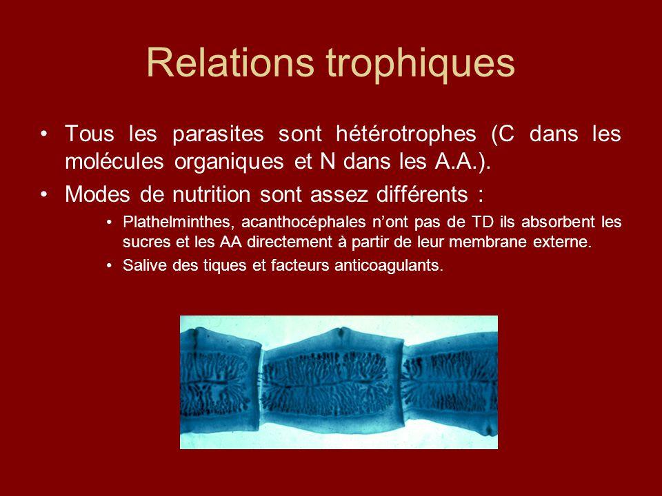 Relations trophiques Tous les parasites sont hétérotrophes (C dans les molécules organiques et N dans les A.A.). Modes de nutrition sont assez différe