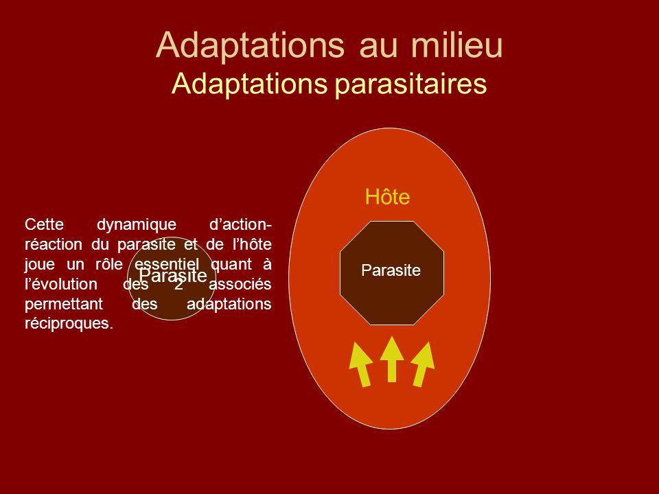 Adaptations au milieu Adaptations parasitaires Parasite Hôte Parasite Cette dynamique d'action- réaction du parasite et de l'hôte joue un rôle essentiel quant à l'évolution des 2 associés permettant des adaptations réciproques.