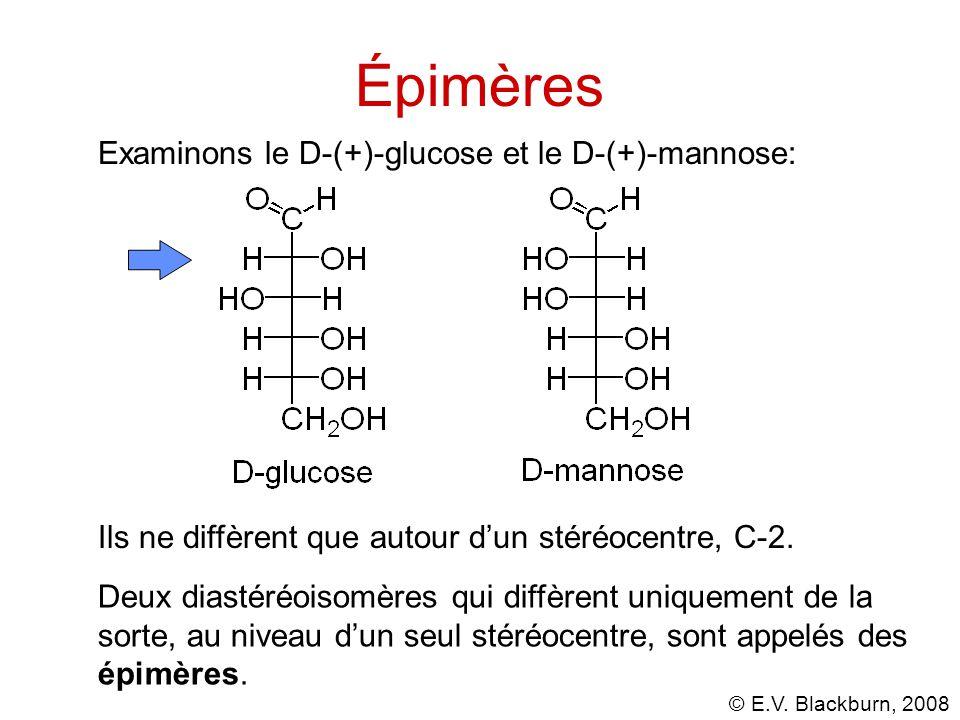 © E.V.Blackburn, 2008 Épimères Ils ne diffèrent que autour d'un stéréocentre, C-2.