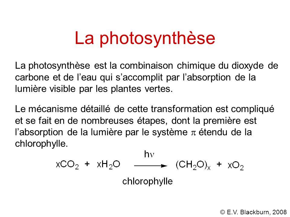 © E.V. Blackburn, 2008 Chlorophylle-a Synthèse: R.B. Woodward, 1960