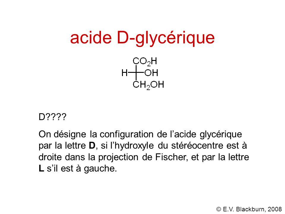 © E.V.Blackburn, 2008 acide D-glycérique D???.