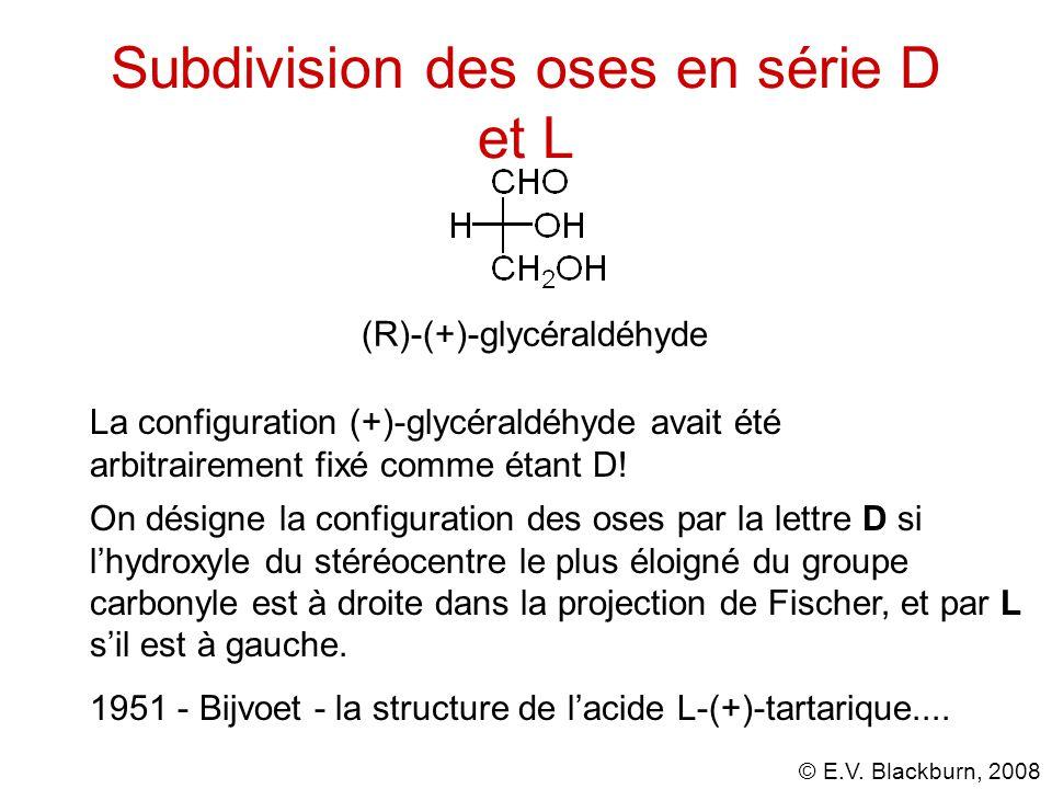 © E.V. Blackburn, 2008 Les oses D Presque tous les oses naturels ont la configuration D.