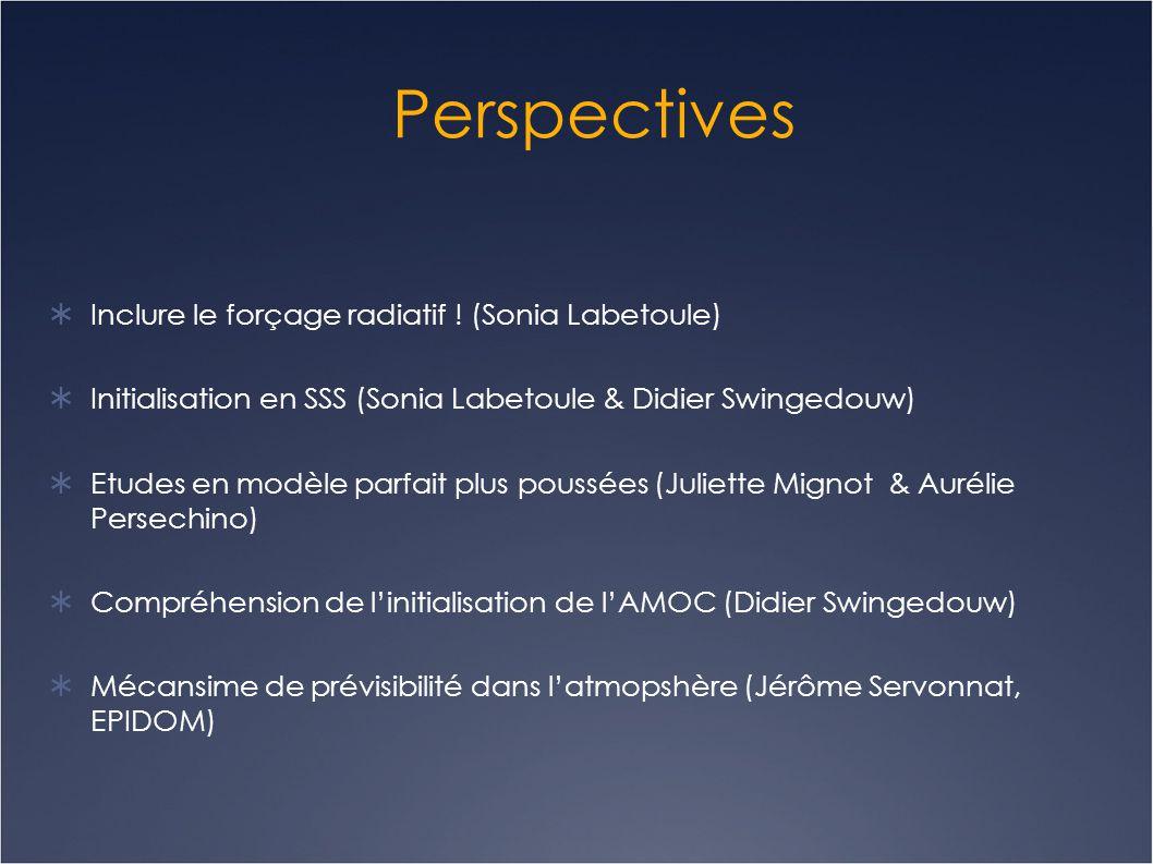 Perspectives  Inclure le forçage radiatif ! (Sonia Labetoule)  Initialisation en SSS (Sonia Labetoule & Didier Swingedouw)  Etudes en modèle parfai
