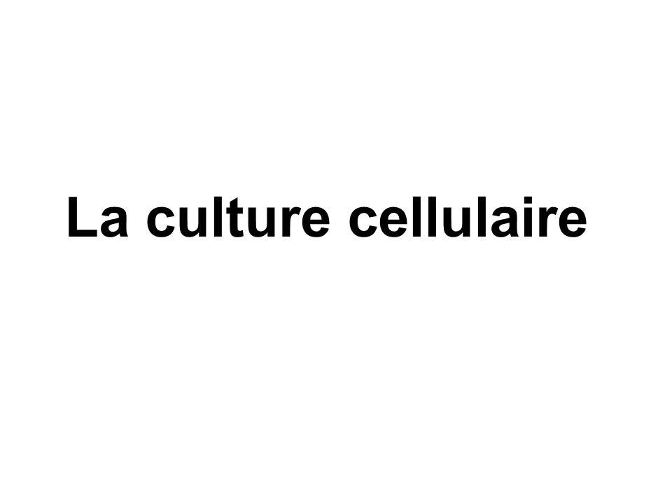 La culture cellulaire