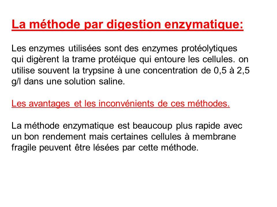 La méthode par digestion enzymatique: Les enzymes utilisées sont des enzymes protéolytiques qui digèrent la trame protéique qui entoure les cellules.