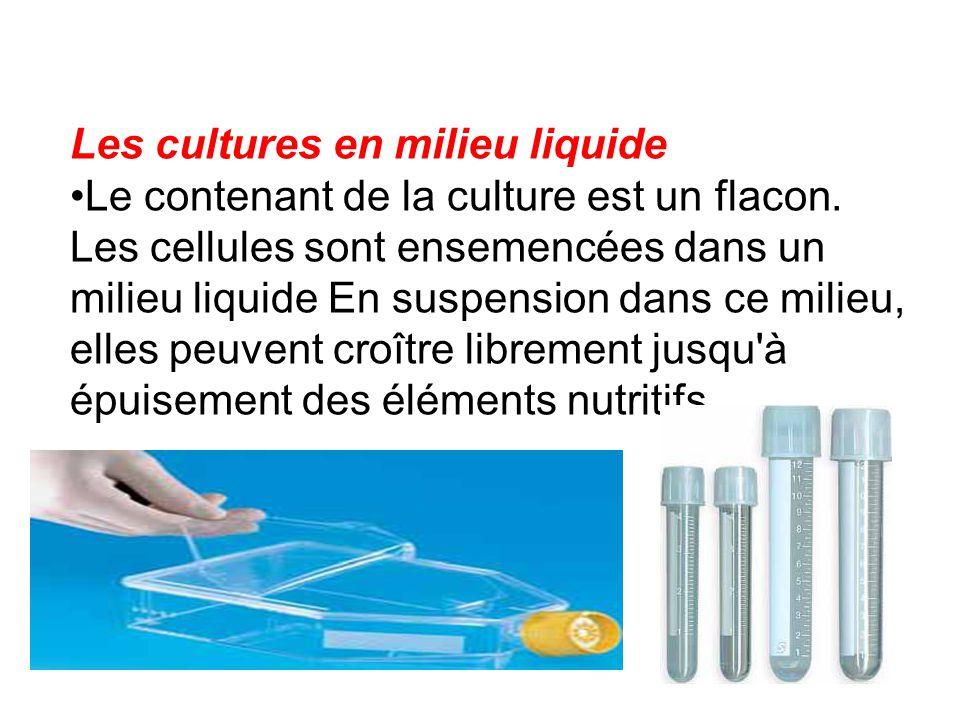 Les cultures en milieu liquide Le contenant de la culture est un flacon. Les cellules sont ensemencées dans un milieu liquide En suspension dans ce mi