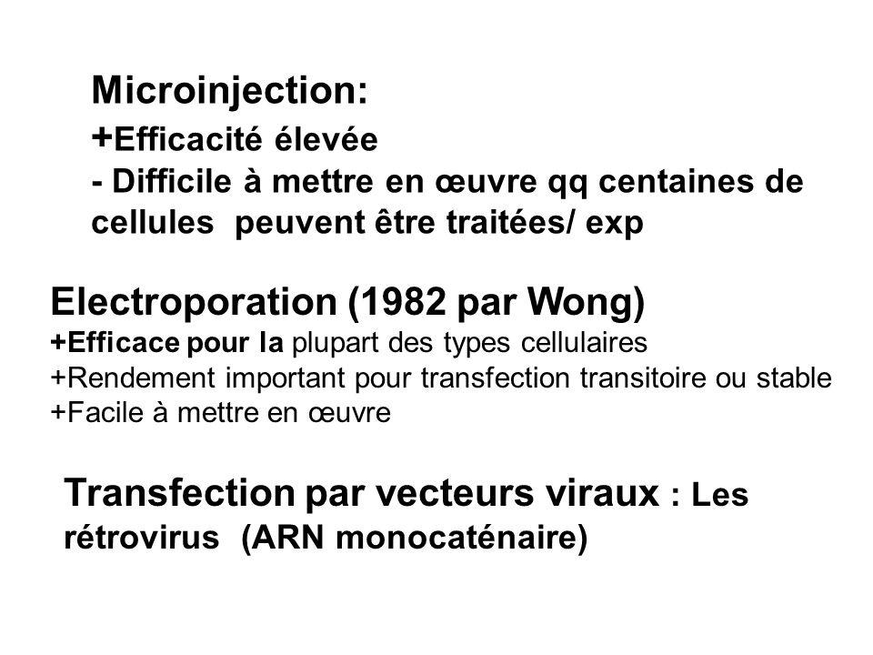 Microinjection: + Efficacité élevée - Difficile à mettre en œuvre qq centaines de cellules peuvent être traitées/ exp Electroporation (1982 par Wong)