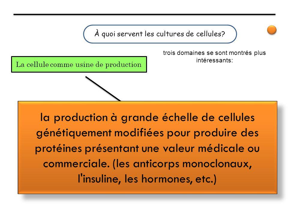 À quoi servent les cultures de cellules? La cellule comme usine de production trois domaines se sont montrés plus intéressants: la production à grande