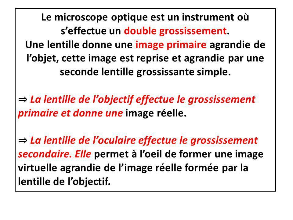 Le microscope optique est un instrument où s'effectue un double grossissement. Une lentille donne une image primaire agrandie de l'objet, cette image