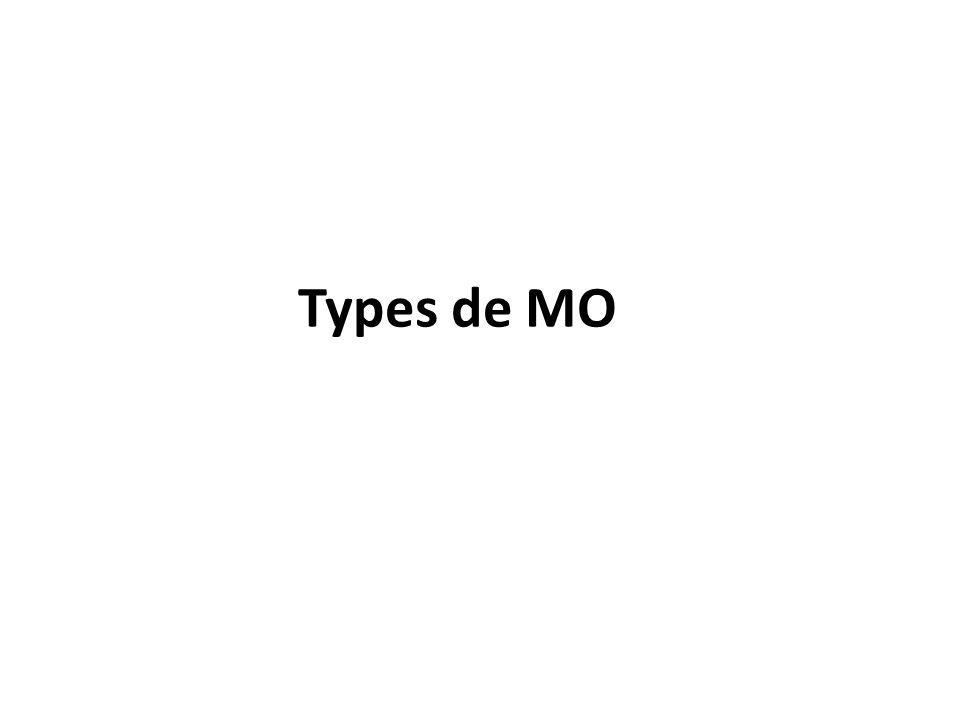 Types de MO