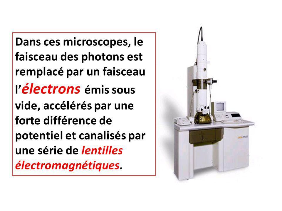 Dans ces microscopes, le faisceau des photons est remplacé par un faisceau l' électrons émis sous vide, accélérés par une forte différence de potentie
