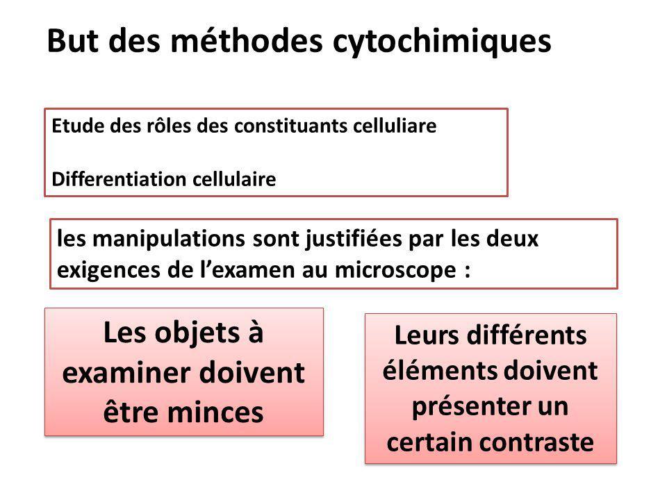 Etude des rôles des constituants celluliare Differentiation cellulaire les manipulations sont justifiées par les deux exigences de l'examen au microsc