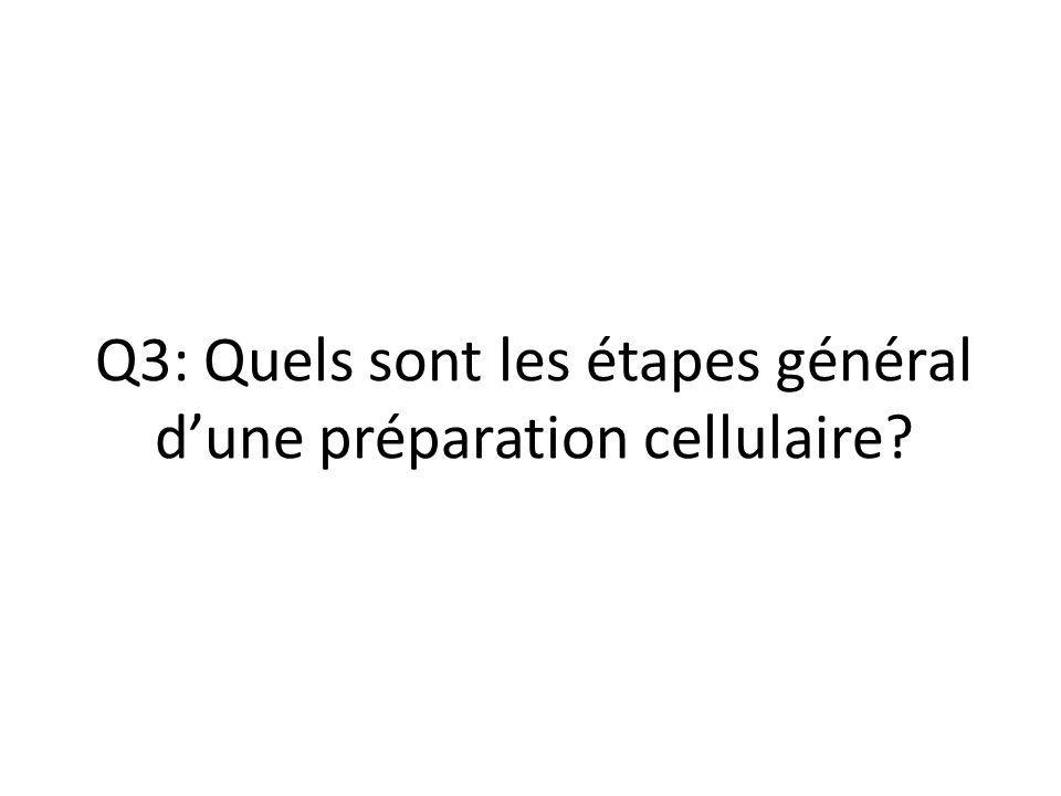 Q3: Quels sont les étapes général d'une préparation cellulaire?