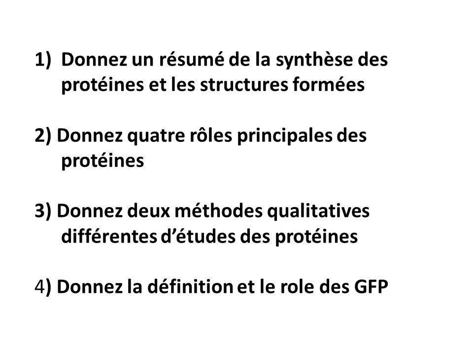 1)Donnez un résumé de la synthèse des protéines et les structures formées 2) Donnez quatre rôles principales des protéines 3) Donnez deux méthodes qualitatives différentes d'études des protéines 4) Donnez la définition et le role des GFP