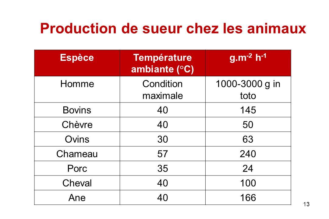 13 Production de sueur chez les animaux EspèceTempérature ambiante (°C) g.m -2 h -1 HommeCondition maximale 1000-3000 g in toto Bovins40145 Chèvre4050