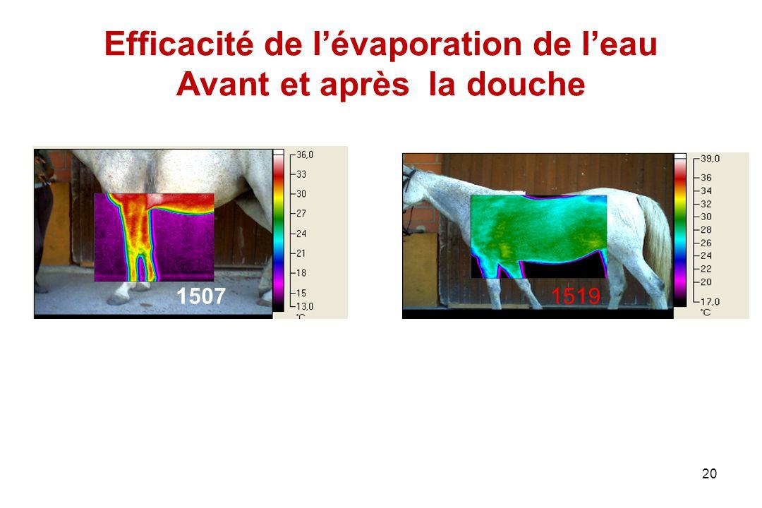 20 Efficacité de l'évaporation de l'eau Avant et après la douche 1507 1519