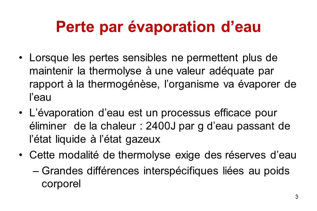 Perte par évaporation d'eau Lorsque les pertes sensibles ne permettent plus de maintenir la thermolyse à une valeur adéquate par rapport à la thermogé