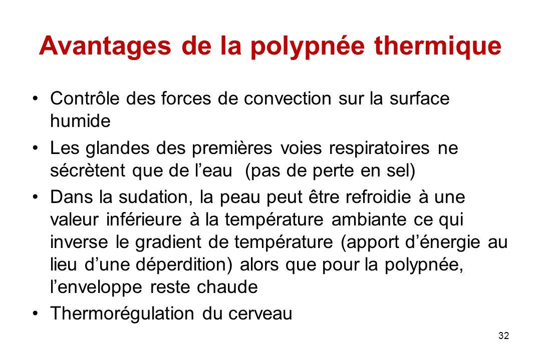 Avantages de la polypnée thermique Contrôle des forces de convection sur la surface humide Les glandes des premières voies respiratoires ne sécrètent
