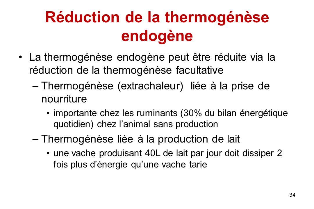 Réduction de la thermogénèse endogène La thermogénèse endogène peut être réduite via la réduction de la thermogénèse facultative –Thermogénèse (extrac