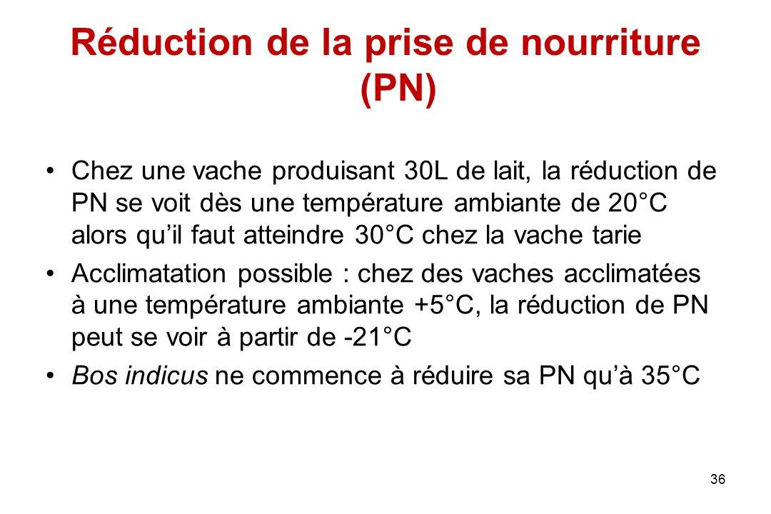 Réduction de la prise de nourriture (PN) Chez une vache produisant 30L de lait, la réduction de PN se voit dès une température ambiante de 20°C alors