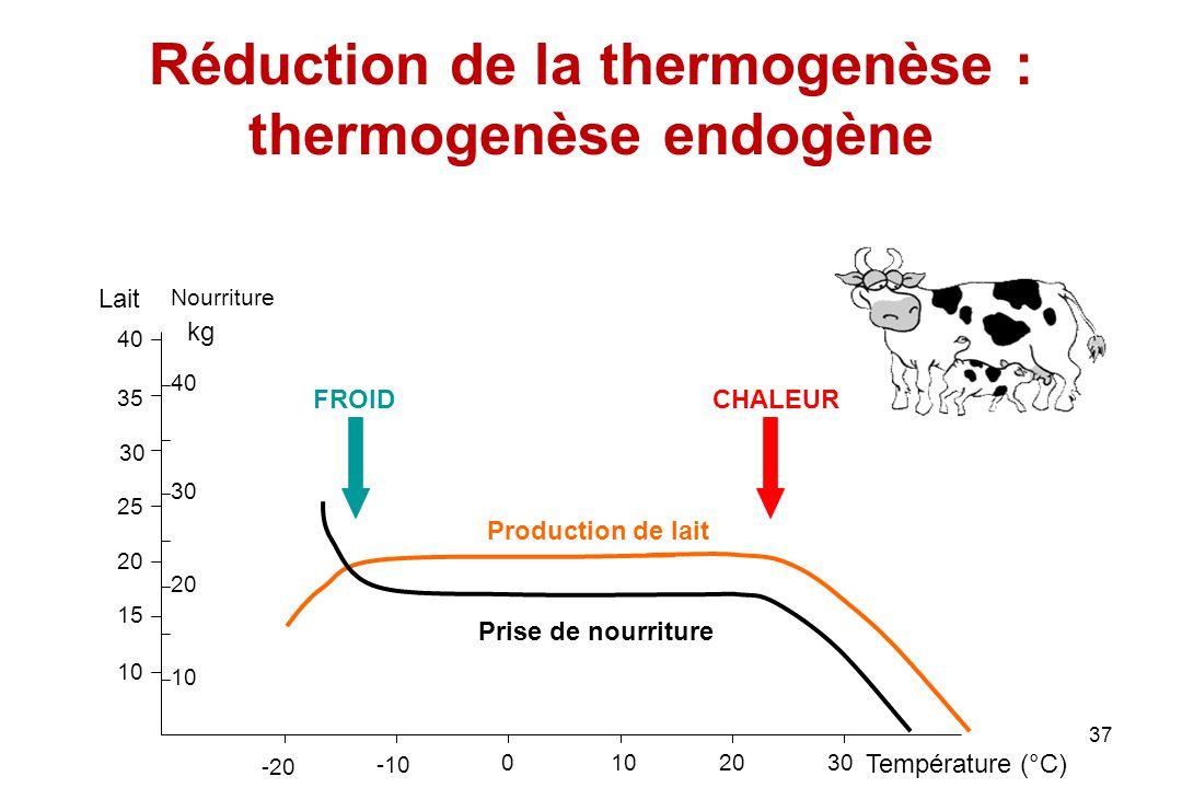 37 Réduction de la thermogenèse : thermogenèse endogène 10 15 20 25 30 35 40 10 20 30 40 Lait Nourriture kg -20 -10 0102030 Température (°C) Productio