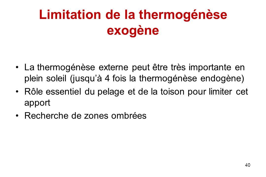 Limitation de la thermogénèse exogène La thermogénèse externe peut être très importante en plein soleil (jusqu'à 4 fois la thermogénèse endogène) Rôle