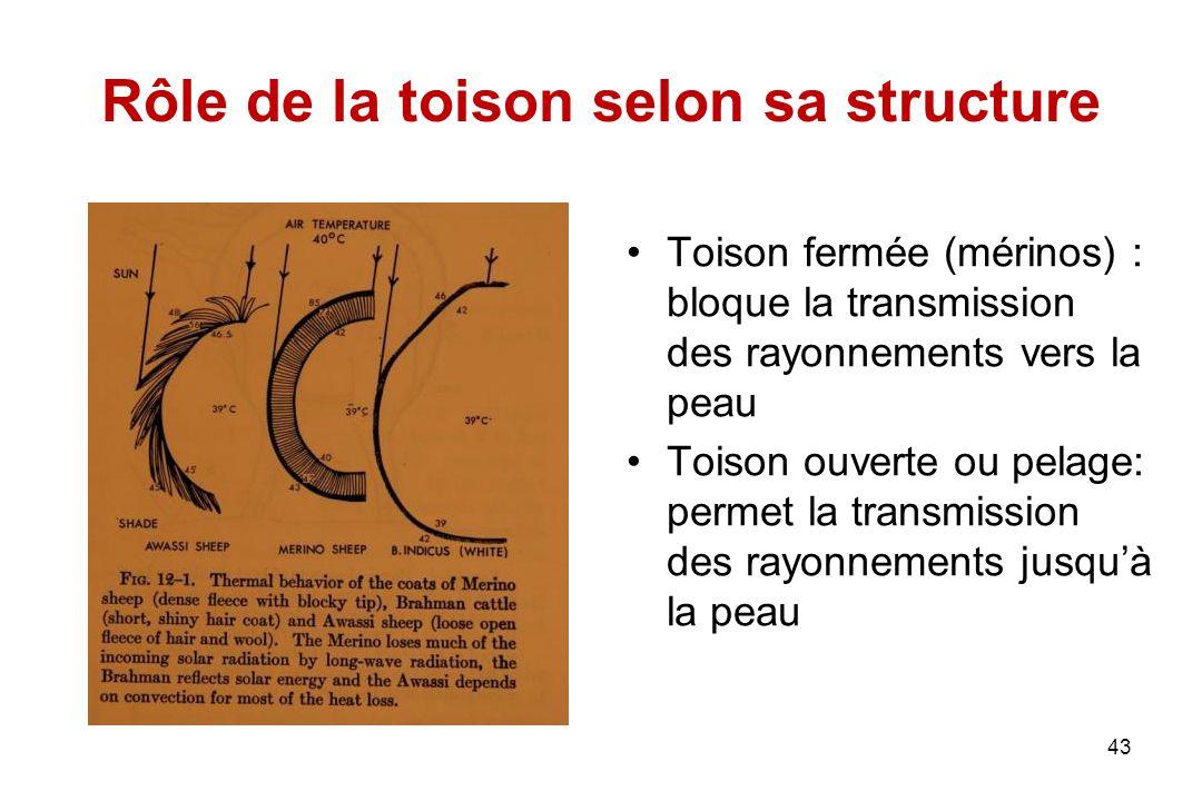 43 Rôle de la toison selon sa structure Toison fermée (mérinos) : bloque la transmission des rayonnements vers la peau Toison ouverte ou pelage: perme