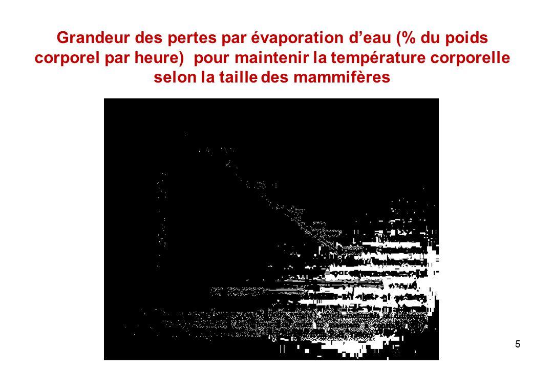 26 Polypnée thermique chez les animaux domestiques EspècesPoids (kg) Fréquence Respiratoire (min -1 ) Débit (l.min -1 ) Chien1-1742054 Porc20-2639031 Agneau440 Mouton32-3729485 Chèvre50-6026548 Bœuf122-172163255
