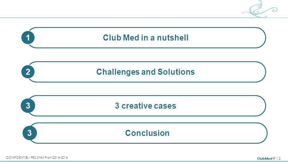 13 CONFIDENTIEL - FBS Strat Plan 2014-2016 Belgique Sud