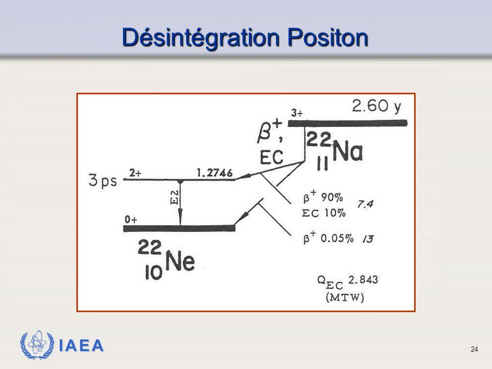IAEA Désintégration Positon 24