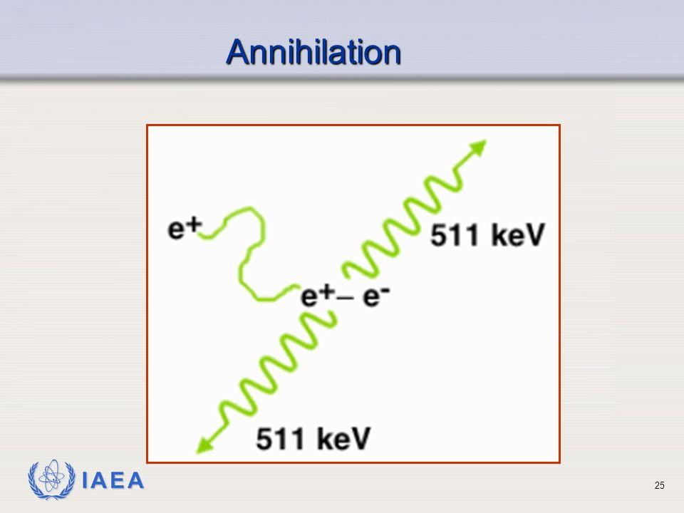 IAEA Annihilation Annihilation 25