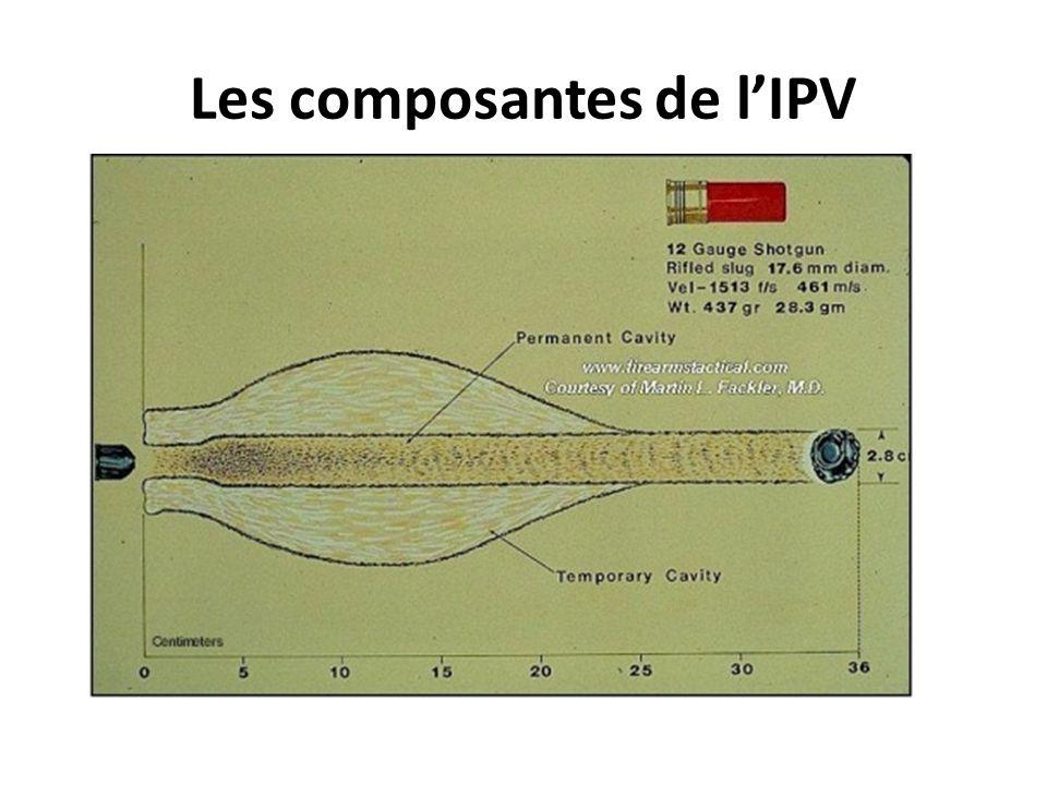 Les composantes de l'IPV